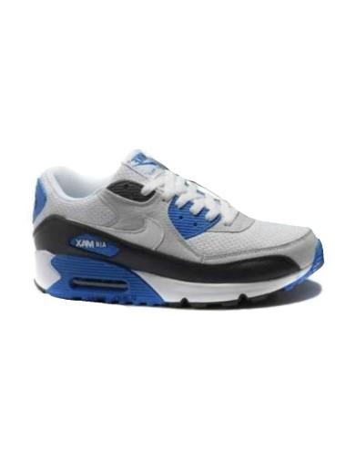 Nike Air Max Azul y Gris
